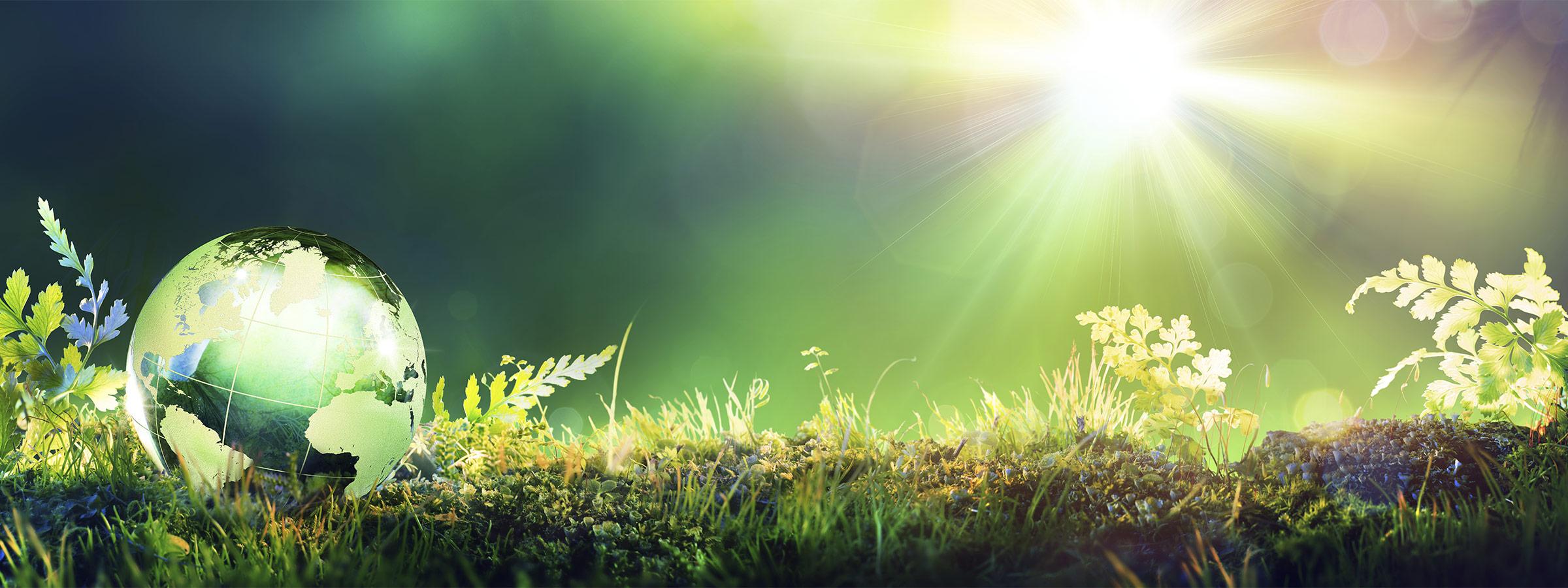 now-environmental-sustainability-hero-2x
